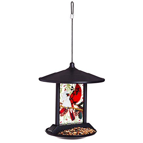 Evergreen Cardinal Family Solar Hanging Bird Feeder