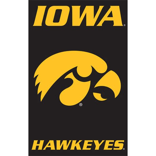 Party Animal Iowa Hawkeyes NCAA Applique Banner Flag (44x28
