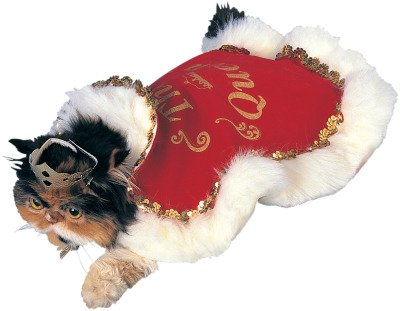 Rubies Costume Halloween Classics Collection Pet Costume, Queen, Large ()
