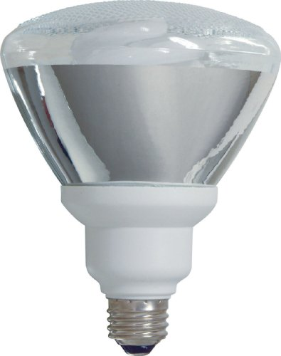 GE Lighting 80895 Energy Smart CFL 26-Watt (100-watt replacement) 1300-Lumen PAR38 Floodlight Bulb with Medium Base, 6-Pack by GE Lighting