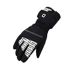 Deercon Winter Warm Sports windproof Waterproof Motorcycle Snowboard Snow Ski Gloves(4 colors)
