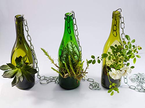 Wine bottle succulent planter
