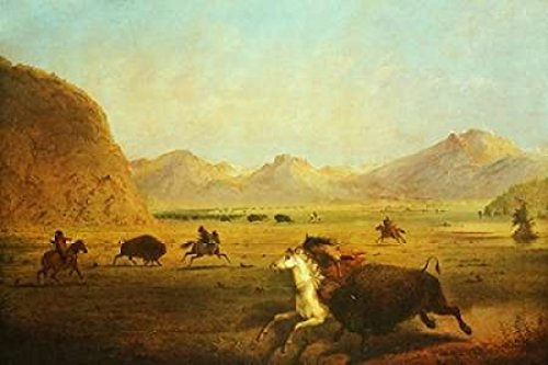 Posterazzi Buffalo Hunt Poster Print by Alfred J. Miller, (24 x 36)