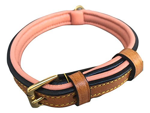 - Soft Touch Collars Leather Dog Collar with Comfort Padding (Size Small) Tan and Coral