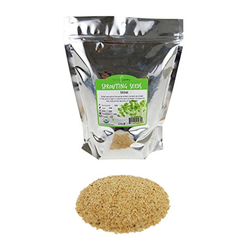 Organic Whole (Hull Intact) Millet Seeds: 2.5 Lb - Cereal Grain - Sprouting Seed - Non-GMO, Animal Feed & Bird Seed