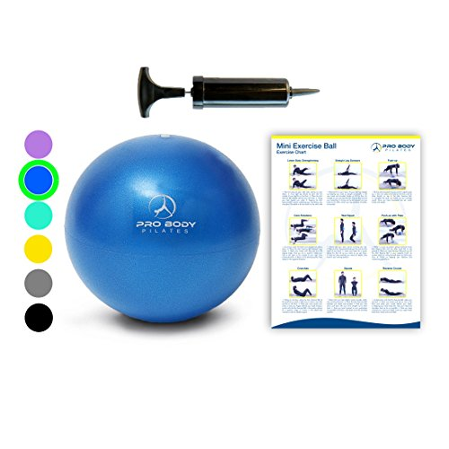 Cheap Mini Exercise Ball with Pump – 9 Inch Small Bender Ball for Stability, Barre, Pilates, Yoga, Core Training and Physical Therapy (Blue)