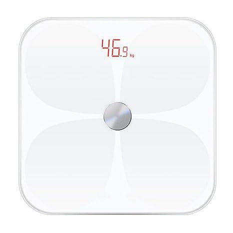 la scienza del dvd di perdita di grasso