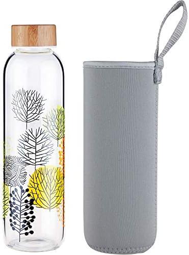 FCSDETAIL Botella de Agua de Cristal sin BPA, Botella de Agua de ...