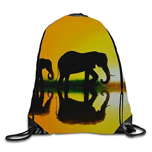 Bnialaed Sfenks Of Giza Drawstring Backpack Travel Rucksack Shoulder Bags Fashion Gym Bag Lightweight Drawstring Gym Yoga Runner Bags For Men Women ()