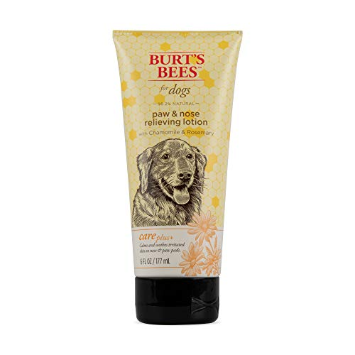 Burt's Bees For Dogs Care Plus Natural Relieving Paw and Nose Lotion With Chamomile and Rosemary, 6 Ounces (Burts Bees For Dogs Soothing Skin Cream)