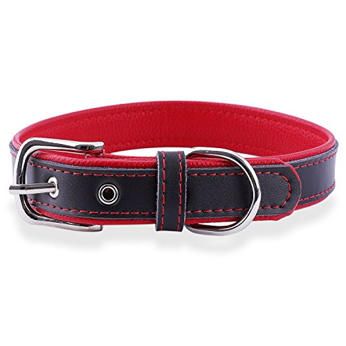 (Epic Rogue Leather Dog Collar and Cat Collar, Soft Padded Genuine Leather Pet Collar for Female Male Cats Puppy and Small Medium Large Dogs(Red, XSmall, Neck 7.5''-10''))