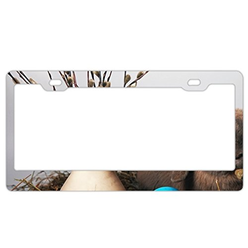 ArtsLifes Personality license Plate Frame Rabbit Easter Egg