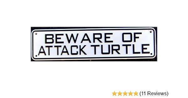 Beware of Attack Turtle