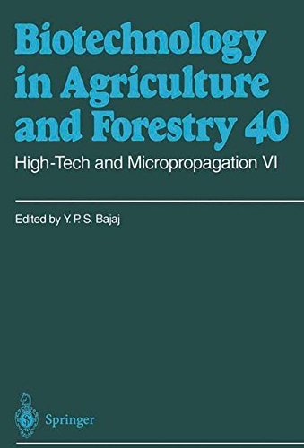 High-Tech and Micropropagation VI: v. 6 (Biotechnology in Agriculture and Forestry) Pdf