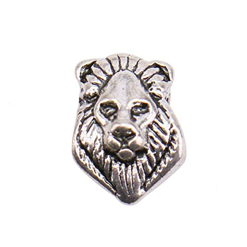 JETEHO 60 Pcs Large Hole Metal Lion Head Spacer Beads European Beads Pendant Charms fit Bracelet Jewelry Making Crafts