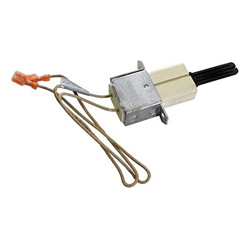 Pentair 472477Z Igniter Replacement Kit MiniMax NT TSI Po...