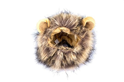 Itplus Pet Cosplay Costume Adjustable Lion Mane Wig Hat for Cat or Small Dog Puppy Hair Accessories Dress up with Ears Christmas Party Festival by Itplus (Image #1)
