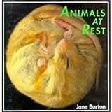 Animals at Rest, Jane Burton, 187813714X