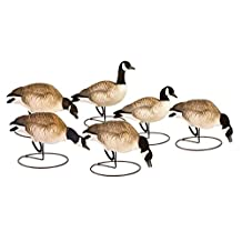 Final Approach Last Pass HD Lesser Canada Decoy Outfitters Pack, Set of 6