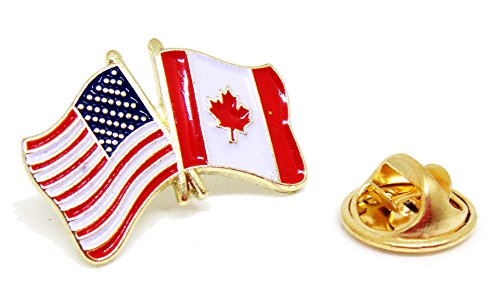 US Flag USA Proudy Patriotic American Standard Official Lapel Pin Series (US - ()