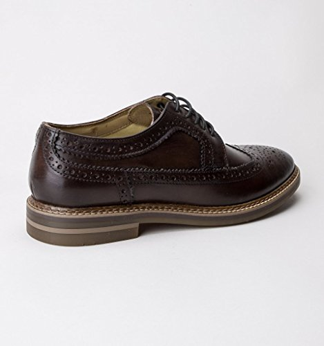 Brouge London Stringate Turner Uomo Scarpe Base Brown ISw1q0n