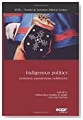 Indigenous Politics: Institutions, Representation, Mobilisation (ECPR Studies in European Political Science)