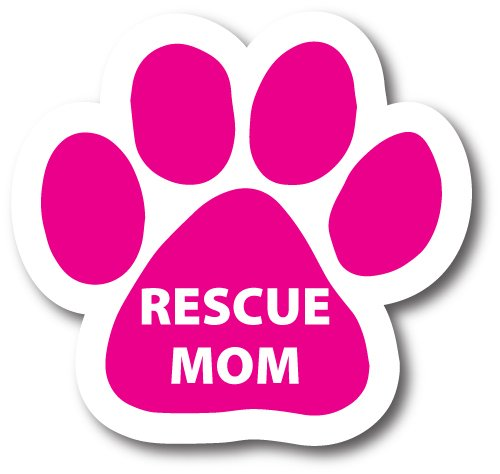 Buy car magnets and decals dog