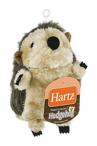 Hartz 11102 Large Hedgehog Dog Toy Assorted Styles Review