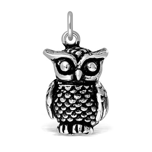 (WithLoveSilver 925 Sterling Silver Large 3D Movable Owl Charm Pendant)