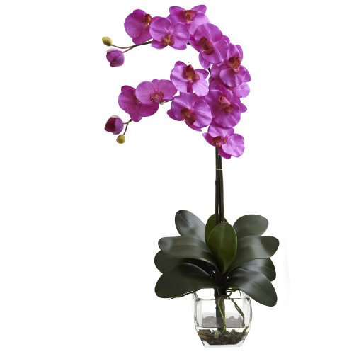 Nearly Natural 1323-OR Double Phalaenopsis Orchid with Vase Arrangement, Orchid