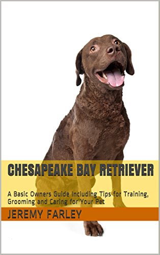 Chesapeake Bay Retriever: A Basic Owners Guide Including Tips for Training, Grooming and Caring for Your Pet