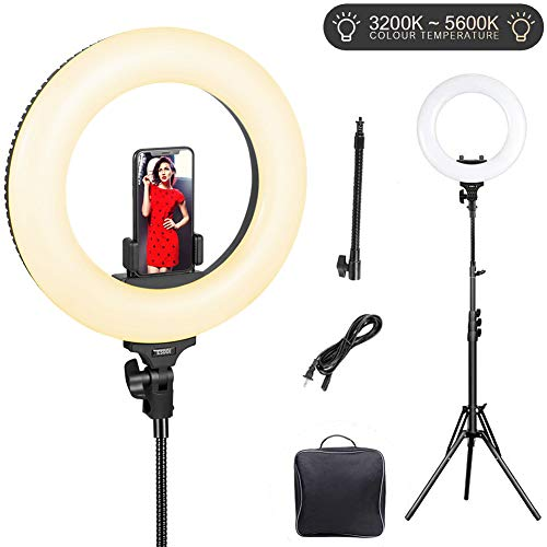 Ring Light, ESDDI 14inch Outer Dimmable Camera Photo Video LED Lighting Kit, Adjustable Color Temperature 3200K-5600K, Light Stand, Phone Adapter, Soft Tube for Portrait YouTube Video, Vlog, Makeup (Best Professional Camera For Portraits)