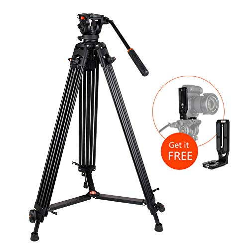 COMAN KX3636 Professional Video Tripod Heavy Duty Aluminum 74 Inch Twin Tubes with Q5 Fluid Head Max Loading 13.2 LB for Pro DV Cameras Camcorders