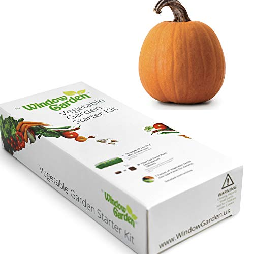 Garden Starter Kit (Pumpkin) Grow a Garden by Seed. Germinate Seeds on Your Windowsill Then Move to a Patio Planter or Vegetable Patch. Mini Greenhouse System Makes it Foolproof, Easy and Fun. ()