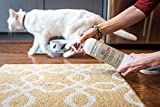 Begley's Best Natural Pet Stain and Odor Remover