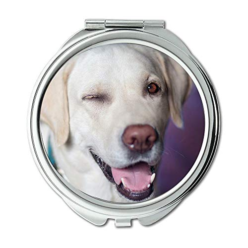 Yanteng Mirror,Makeup Mirror,Dog Labrador Jolly Winks View Closeup,Pocket Mirror,Portable Mirror (Best Vitamins For Labradors)