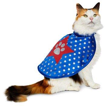 Petco Halloween Superhero Cat Costume, One Size Fits Most (Unique Pet Costumes)