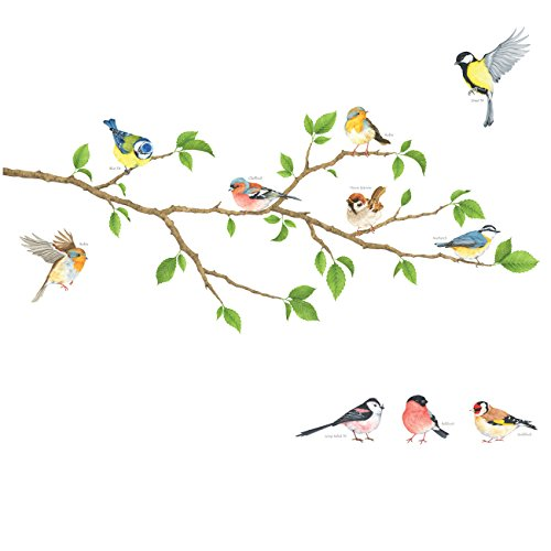 (Decowall DA-1804 Garden Birds on Tree Branch Kids Wall Stickers Wall Decals Peel and Stick Removable Wall Stickers for Kids Nursery Bedroom Living Room)