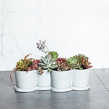 Modern Desktop Planter Vase,Succulent Plant Pot,Cement Planter,Decorative Flower Planter