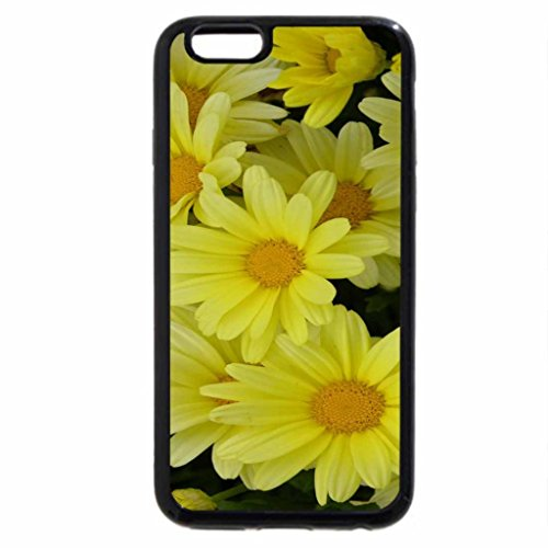 iPhone 6S / iPhone 6 Case (Black) Yellow Argyranthem Flutterby Growing in Colorado
