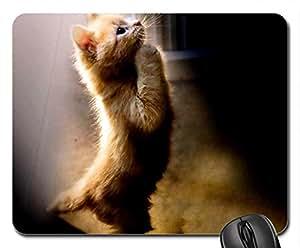 La oración de un año nuevo. Ratón, Mousepad (gatos ratón)