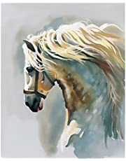 WOWDECOR Paint by Numbers Kits for Adults Kids, DIY Number Painting - White Horse 40 x 50 cm - New Stamped Canvas