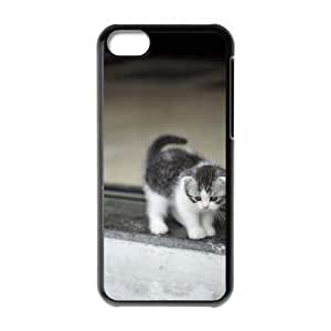 Custom Cover Case with Hard Shell Protection for Iphone 5C case with Stay Meng cat lxa#468494 by icecream design