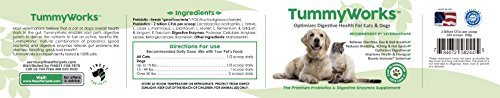 Probiotics for Dogs Cats greatest Probiotics