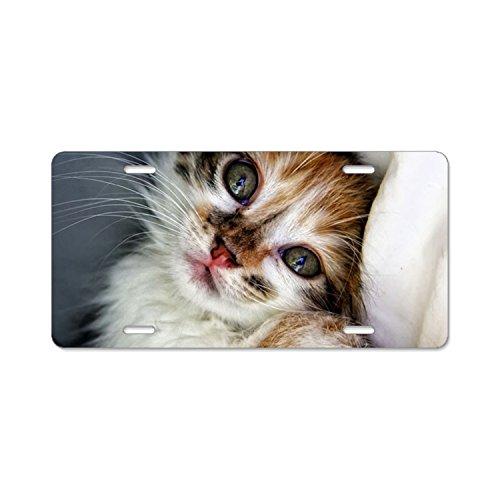 - Kefanlk Spoiled Kitty License Plate Frame Theft-proof Frames Aluminum Board Frames For Men Women