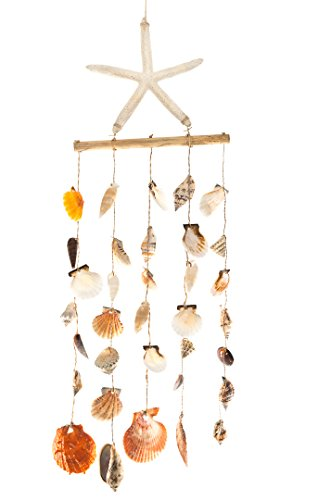 - Nautical Crush Trading Flat Seashell Wind Chime | Hanging Shell Wind Chime with Starfish| Beach Wind Chime for Decoration