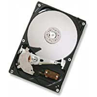 Hitachi HGST CinemaStar 500GB 3.5 SATA Drive