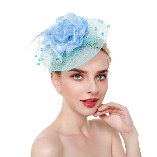 Vintage Flower Mesh Feathers Fascinators Hat for Women Kentucky Derby Cocktail Tea Party (Sky Blue)