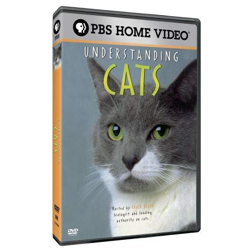Understanding Cats by PBS
