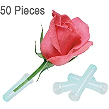 """Lieomo 50Pcs/Pack 3"""" Clear Floral Water Standard Tubes Vials With Caps For Flower Arrangements"""